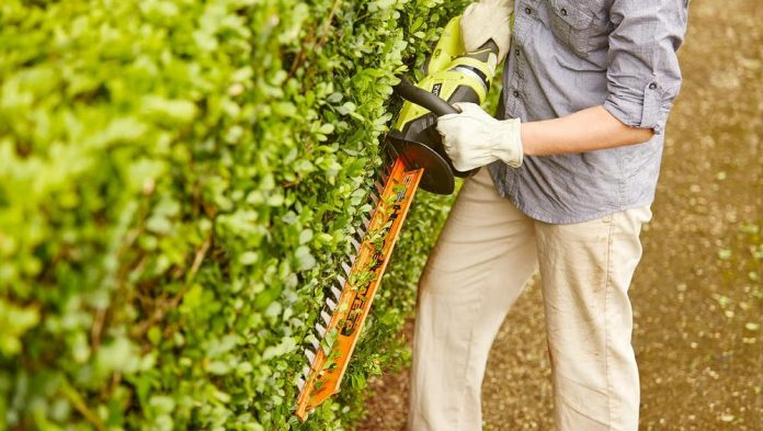 Hedge Trimmers in 2021